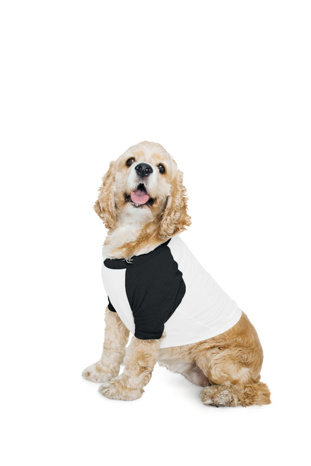 American Apparel AMA Dog T-shirt